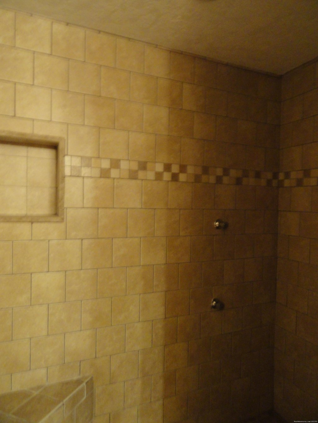Jetted Walk in Shower in Master Bath | Image #16/20 | Luxury Cabin on Beautiful Mt Stream $199/nightly