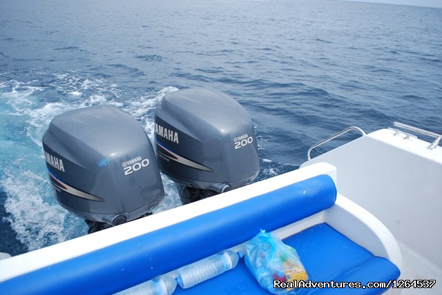 Image #5 of 6 - Fishing for GTs by speed boat in Maldives.