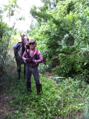 Just Horsin' Around Ranch Horseback Riding Boynton Beach, Florida