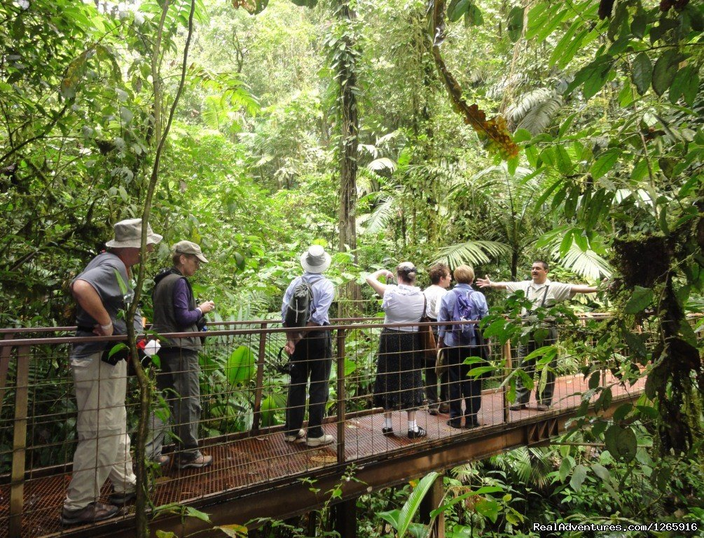 With Naturalist Guide at Arenal Hanging Bridges