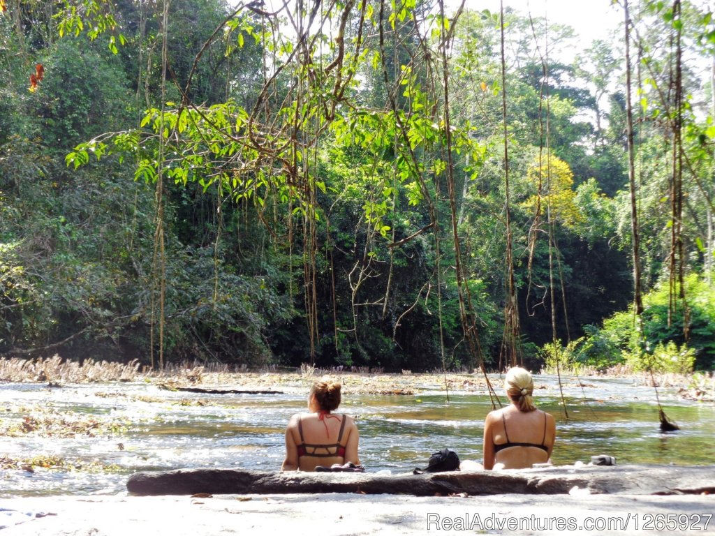 Panaroma view to the jungle, relax and enjoy | Image #8/8 | Suriname, a melting pot of cultures and heritage