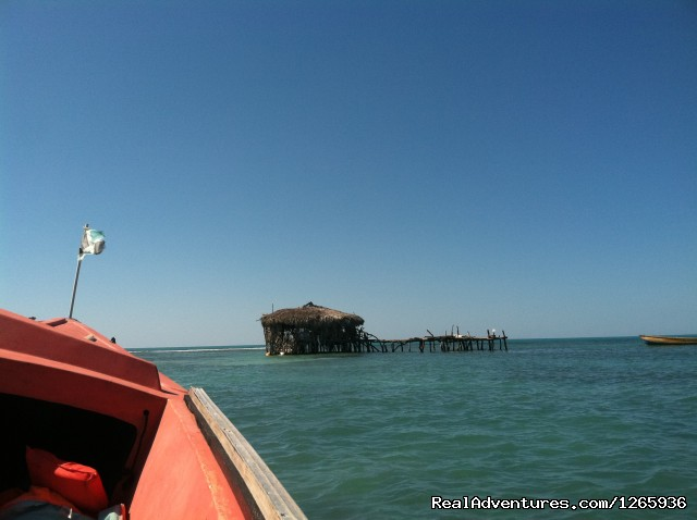Pelican Bar (#17 of 26) - Katamah Treasure Beach Jamaica