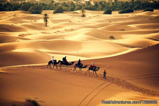 Morocco Tours | Desert Tours from Marrakech