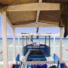 Bali   Delight Paradise Beach With Outrigger Boat.