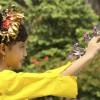 Bali   Delight Bali Woman.