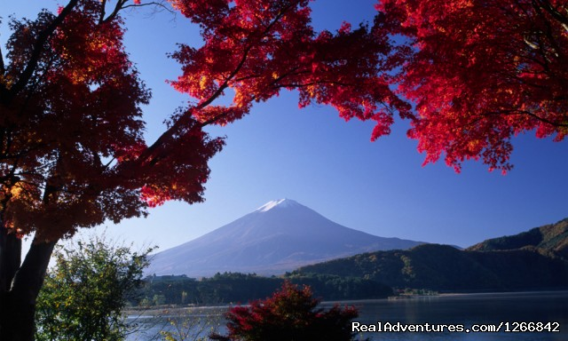 Japanese Autumn Landscape - Discover Japan In Luxury