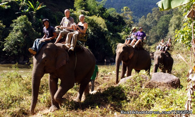 Elephant Trail (#6 of 6) - Family Adventure In Chiang Mai