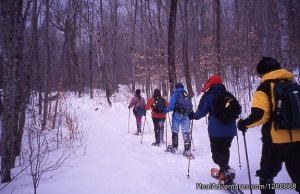 AdventureTours in NJ Parsippany , New Jersey Sight-Seeing Tours