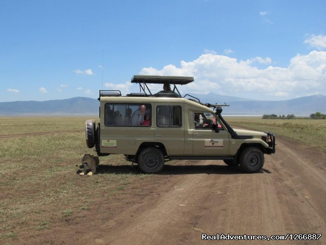 - Gosheni Adventures 4 Tanzania Safaris Expeditions