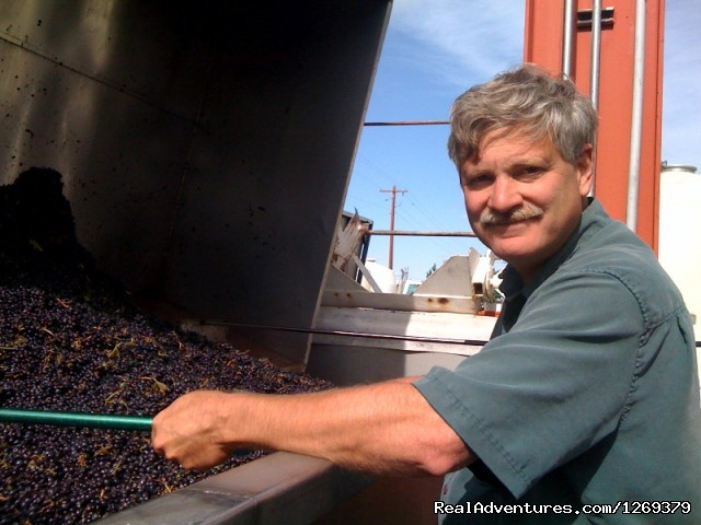 Winemaker Rob Griffin during CRUSH (#6 of 22) - Barnard Griffin Winery: Wine Tasting Daily 10a-5p