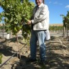 Winemaker Rob Griffin checks grapes
