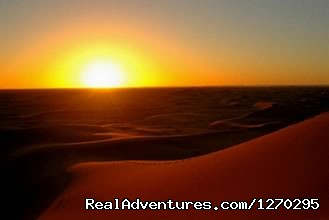 Camel trekking for ONE Night in the desert - Indigo Safari Tours In Morocco
