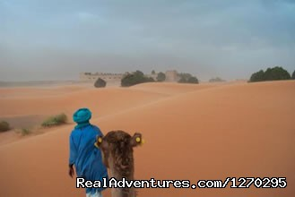 Camel trekking for TWO Night in the desert - Indigo Safari Tours In Morocco