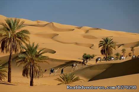 Best Of Morocco Holidays: camel trek in the Erg Chebbi dunes