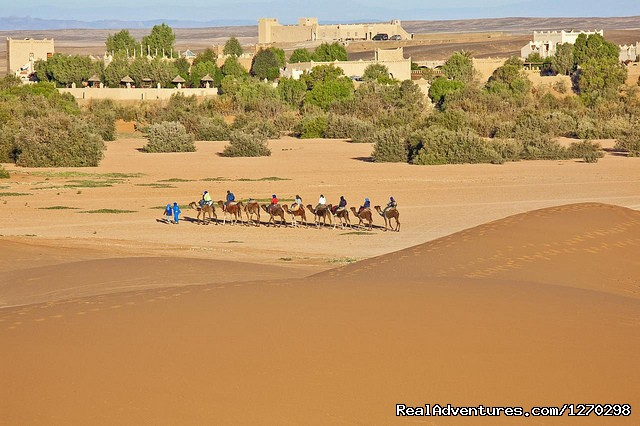 Camel Trekking - Best Of Morocco Holidays