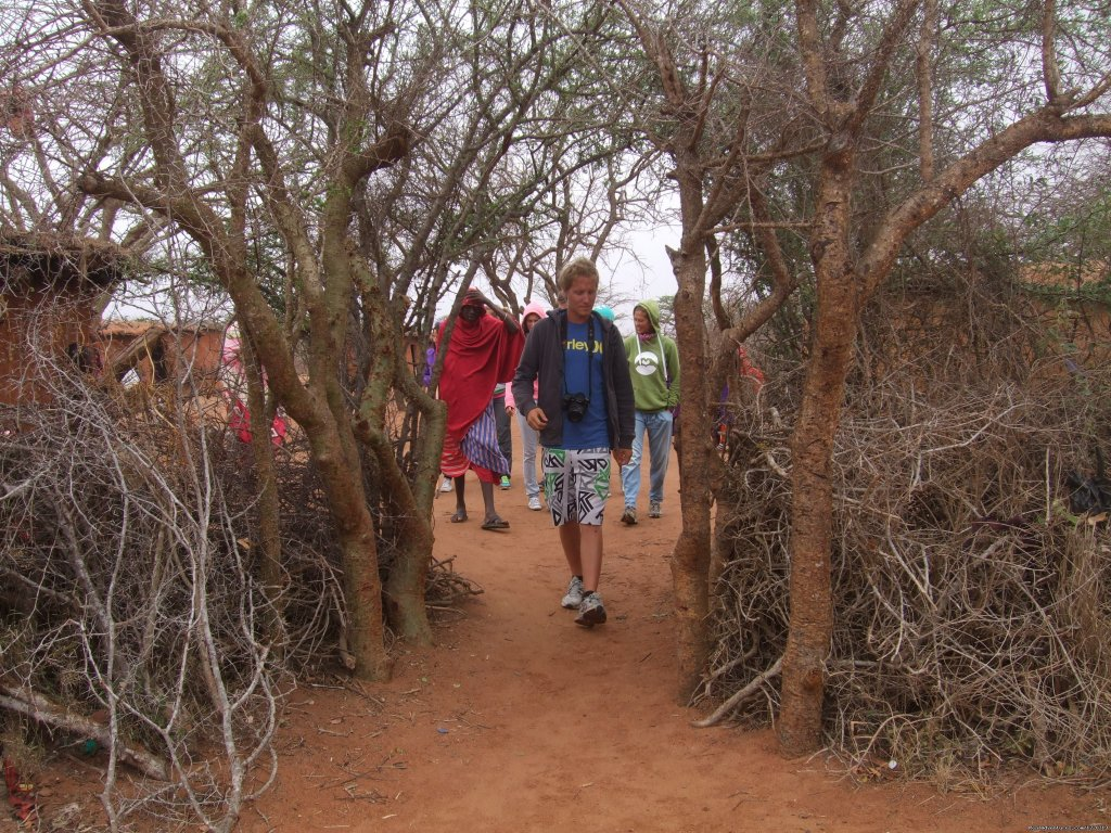 5days/4nights camping safari in Tsavo west-Amboseli and Tsavo East national parks.