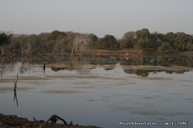Lake by the evening - Ranthambore Adventure Tour