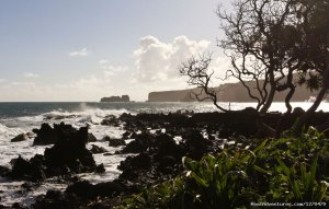 Road to Hana Tour on Maui Hawaii Sight-Seeing Tours Wailuku, Hawaii
