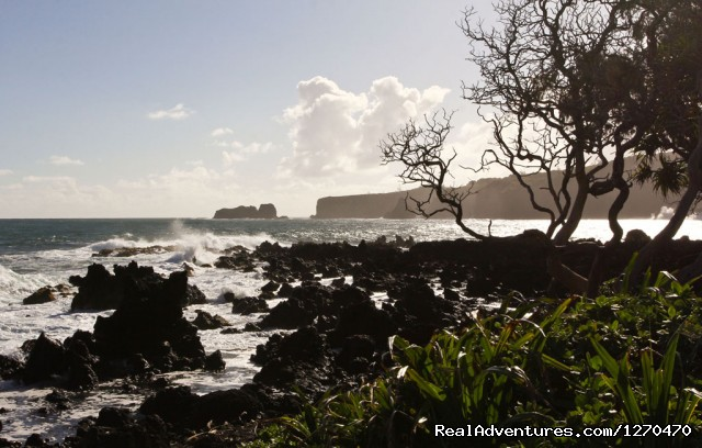 Road to Hana Tour on Maui Hawaii