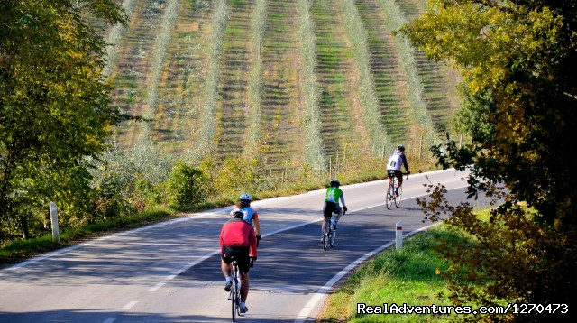 - Luxury Bicycle Tour in Tuscany