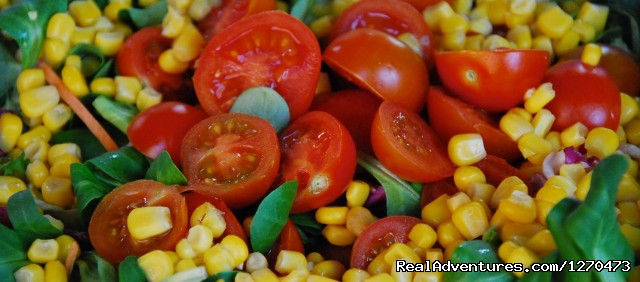 Delicious Tomatoes at a Picnic - Luxury Bicycle Tour in Tuscany