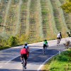 Luxury Bicycle Tour in Tuscany