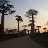 Discovery Tour of MADAGASCAR