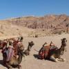 Tours to Petra - view