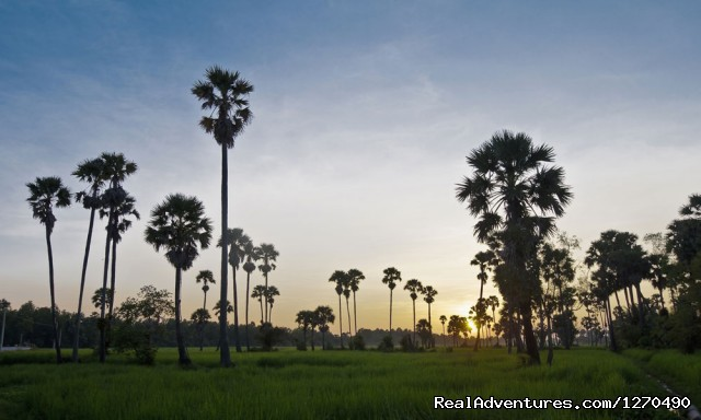 Sunset at rice fields near Prasat Kamnap within the Angkor T - Angkor For Two: A Romantic Journey
