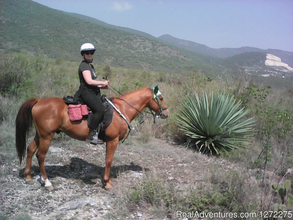 Exotic agave on trail | Image #13/20 | Oaxaca Adventure Stay