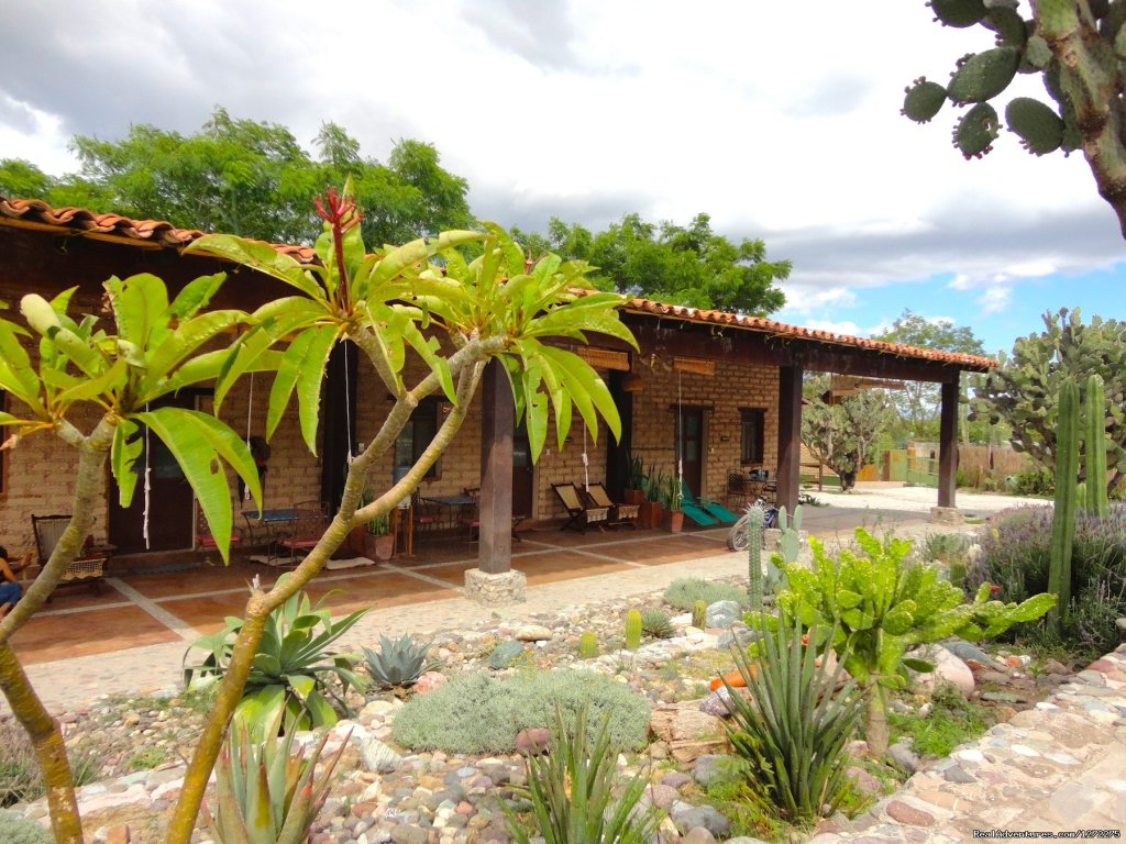 View of the Guest Lodge | Image #3/20 | Oaxaca Adventure Stay