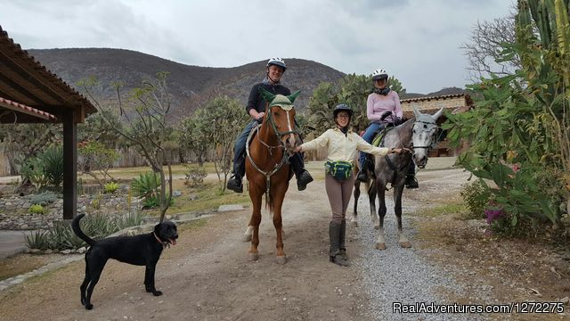 Perfect Year Round Riding - Oaxaca Horseback Riding Adventures