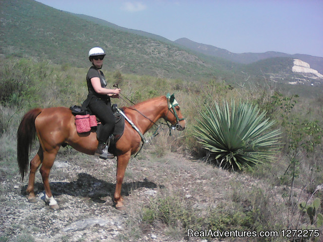 Trekking on Horseback (#6 of 26) - Oaxaca Horseback Riding Adventures