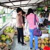 Hue Central of Vietnam