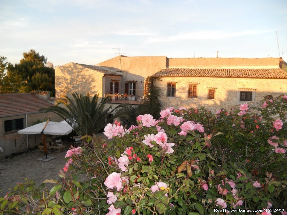 Outside | Image #5/25 | Beautiful Farm Holiday in Corleone, Sicily