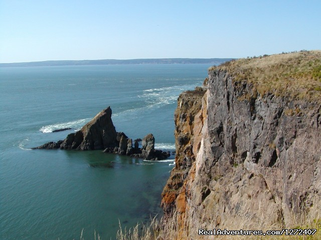 Cape Split hike (#4 of 4) - Fundy & Glooscap Hike with Freewheeling Adventures