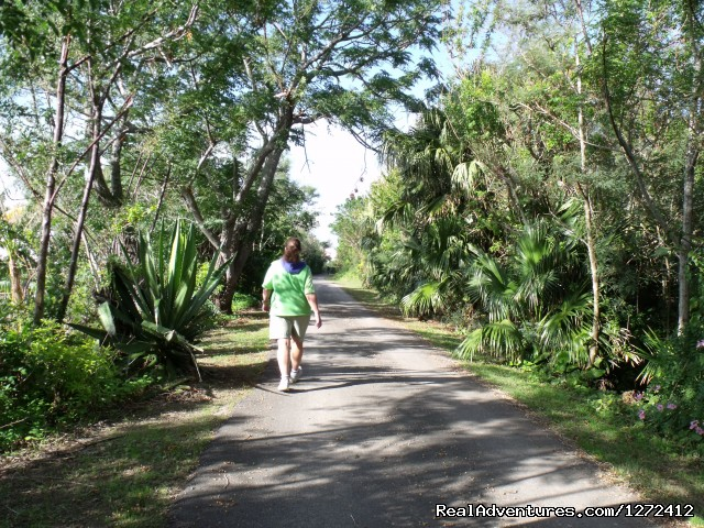 Bermuda: Island Walk - Freewheeling Adventures: