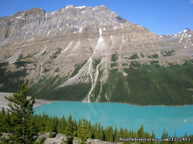 7 days. Challenging cycling on the paved, broad-shouldered Icefields Parkway, with an optional day of hiking in the peaks behind Lake Louise