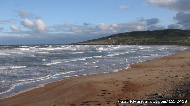 - Hike Cape Breton Island - Freewheeling Adventures