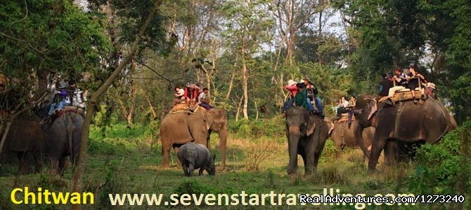 Chitwan Jungle Safari Unleash yourself in the wild Not only does Nepal offer glorious mountain trekking and raging river rafting, but it also has a fine selection of pristine national parks.