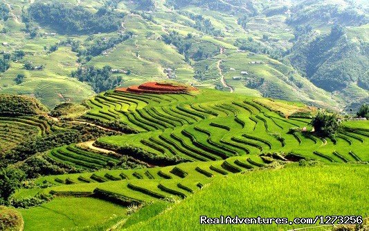 Sapa | Image #5/8 | Christmas and New Year in Vietnam (9 nights)