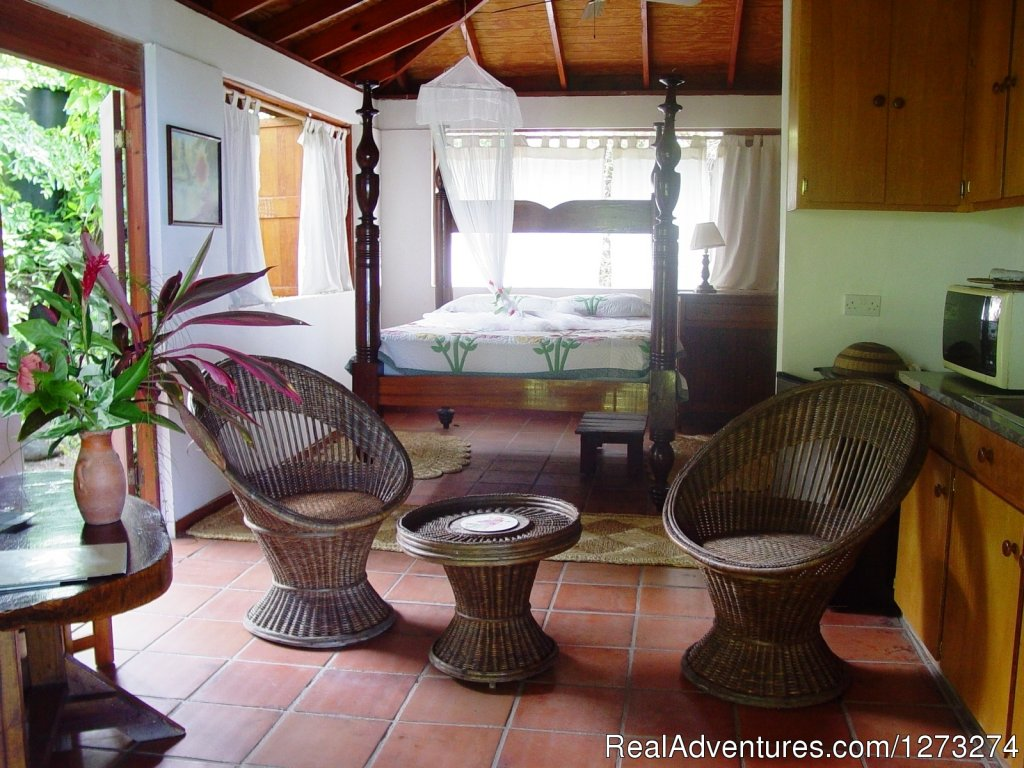 'Recommended on Trip Advisor' 2012, The  Hummingbird Inn Dominica hill-top retreat is an 'eco-inn' in a flowering hibiscus garden, with frolicking hummingbirds,lazy Iguanas and comfortable rooms with stunning views that relax you to our warm welcome