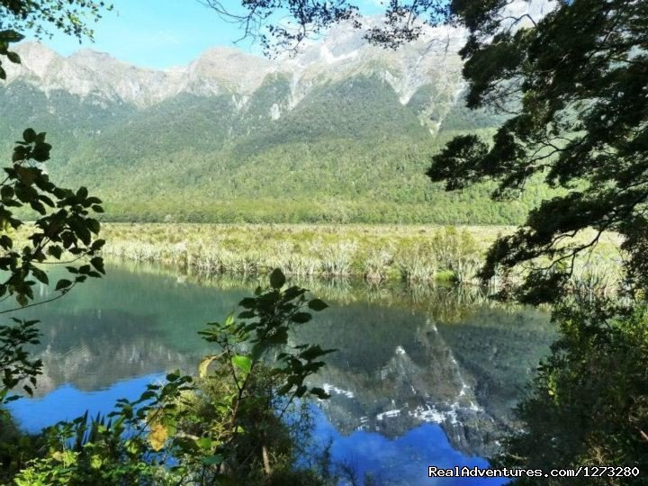 Eglington Valley Milford Sound | Image #16/19 | Self Drive and Guided New Zealand Tours