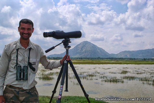Looking for waders - Wildlife & Birding Adventures