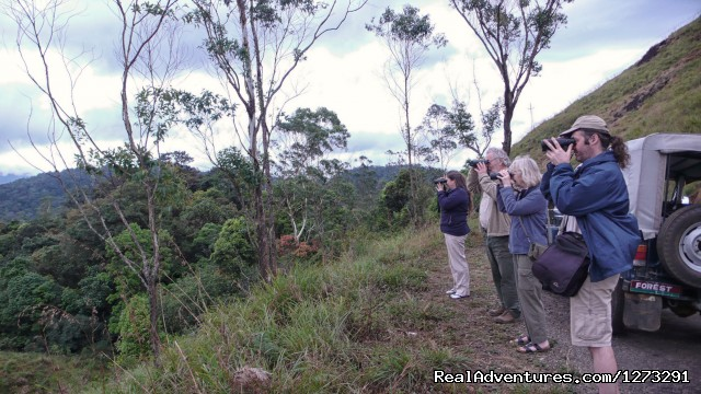 Birding group in the western ghats