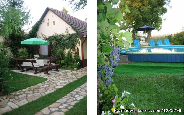 Garden - Nice atmosphere, unique opportunity at Balaton