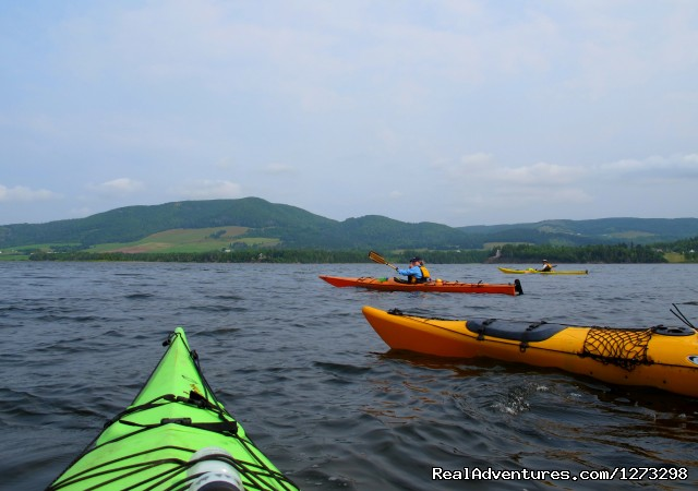 Image #2 of 9 - Nova Scotia Outer Islands Seakayak - Freewheeling