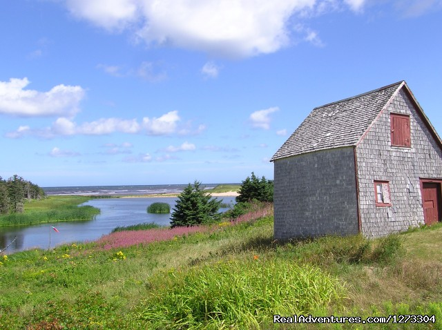 - Quebec: Magdalen Islands Multisport - Freewheeling