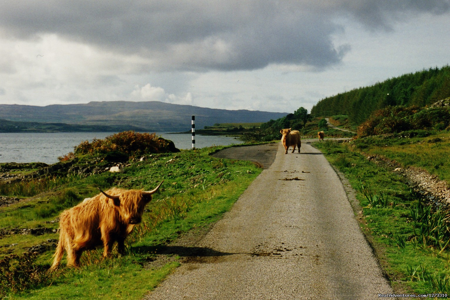 Image #15/20 | Scotland: West Coast Bike - Freewheeling Adventure