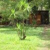 Vacation Rentals Eco Lodge Costa Rica Vacation Rentals Aguascalientes, Mexico